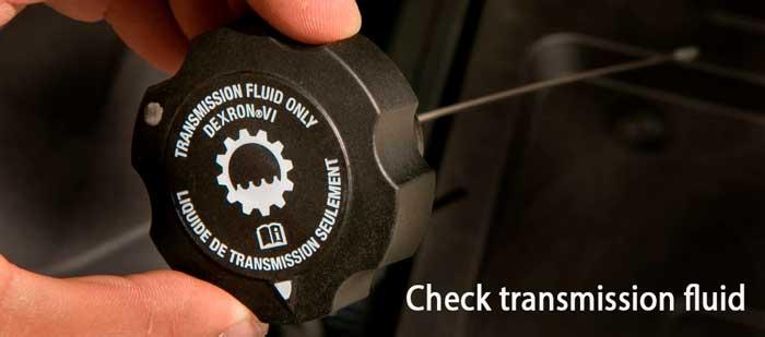 check transmission fluid